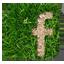 Logo Facebook prato