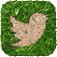 Logo Twitter prato